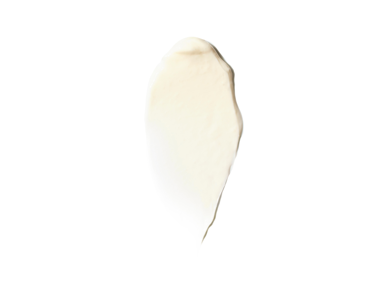 Royal Fern Phytoactive Anti-Aging Rich Cream | Shop now on @violetgrey https://www.violetgrey.com/product/phytoactive-anti-aging-rich-cream/ROY-RF470141